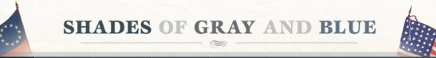 Shade of Gray and Blue online collection
